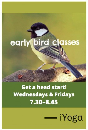 early bird classes poster